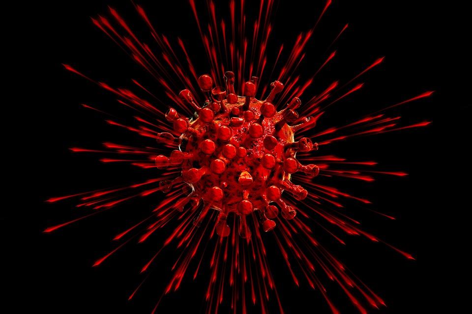 corona virus live